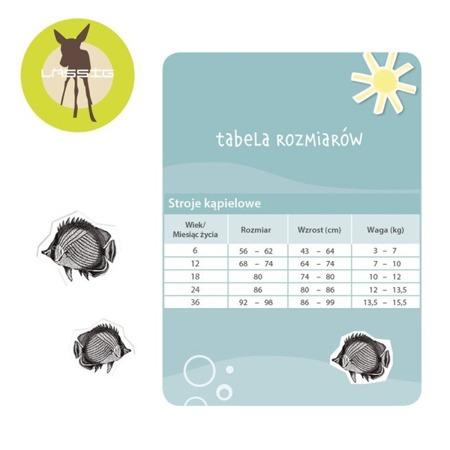 Lassig Majteczki do pływania z wkładką chłonną Ice Cream UV 50+ 18m-cy